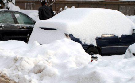 Lenea e cucoană mare şi se vede în … parcare!