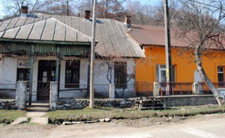 Dispensarul Veterinar se prăbușește, brutăria făcută cadou afaceristului Țuhașu înflorește