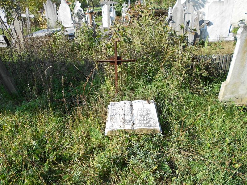 Nu căutaţi mormântul mamei lui Brâncuşi la Hobiţa!