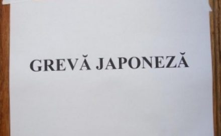Profesorii gorjeni, în grevă japoneză