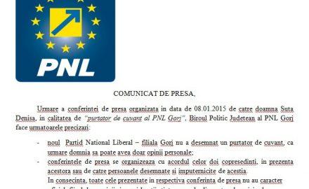 Gorjul rămâne în ghearele PSD. Dian și Iordache joacă pe muzica lui Ponta