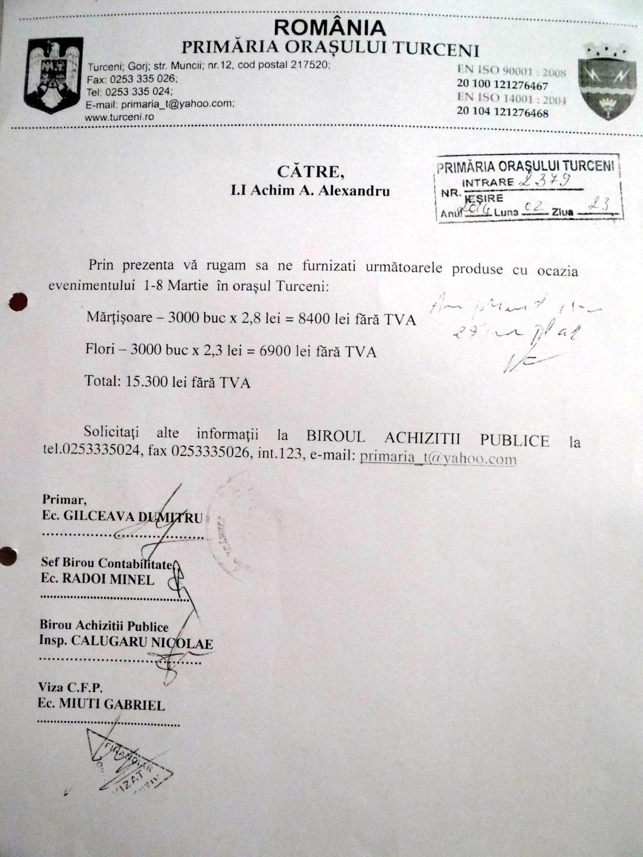 document primaria turceni 11
